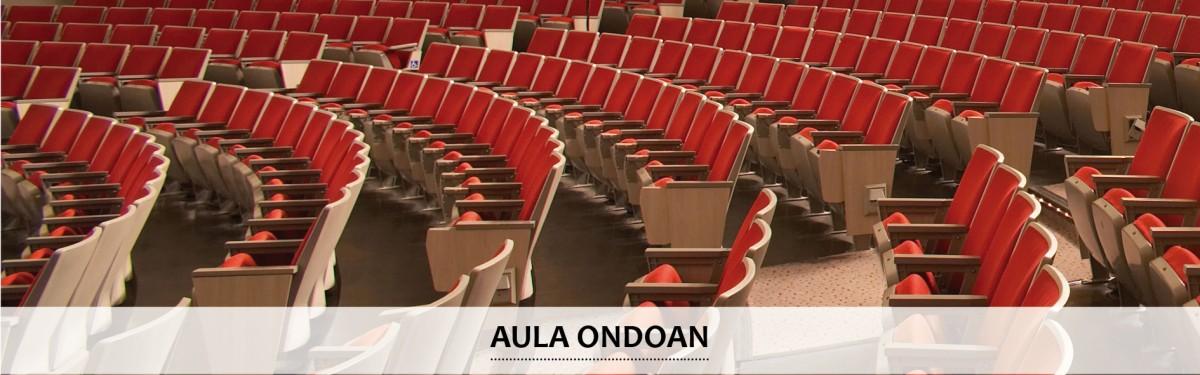 Aula Ondoan