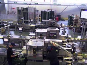 Ejecución de las Instalaciones de Electricidad, Seguridad, Climatización, Ventilación y Fontanería para FRIBASA en Orozko