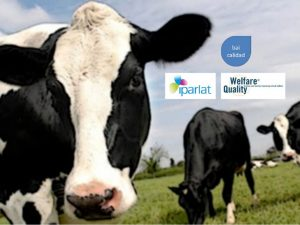 Sistema de Gestión de Bienestar Animal en Iparlat