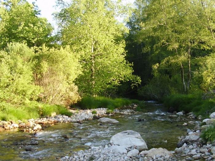 Actuaciones medioambientales para URA y el Ayuntamiento de Barakaldo